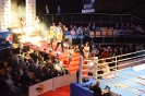 World Series of Boxing_12