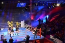 World Series of Boxing, WSB